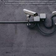 immuni sicurezza libertà